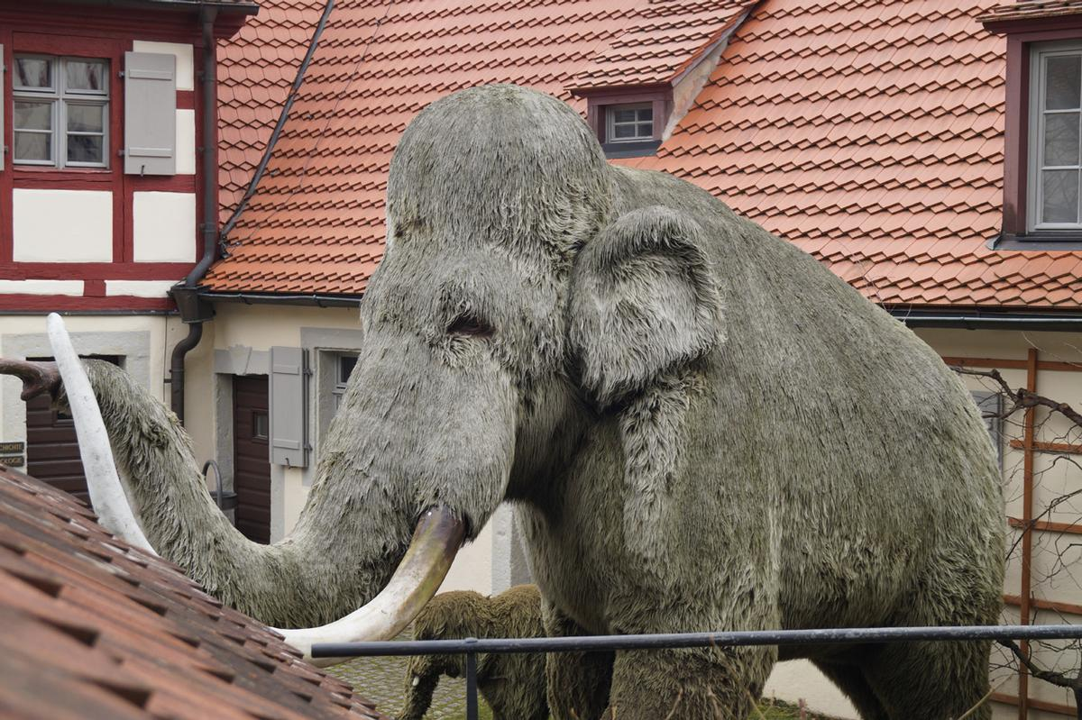 Als das Mammut zu schwitzen begann...