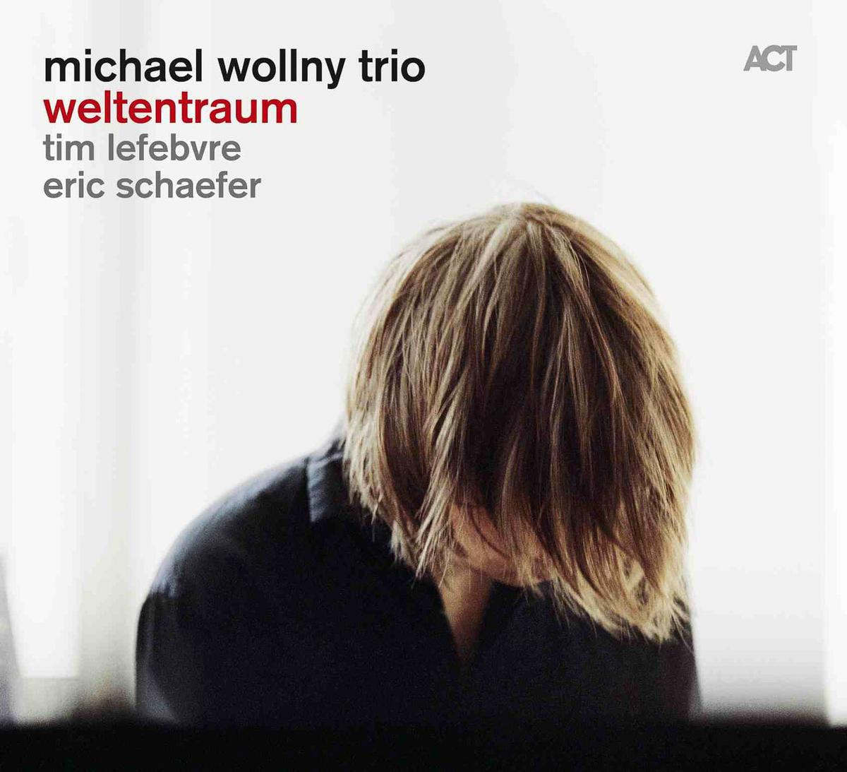 Michael Wollny Trio